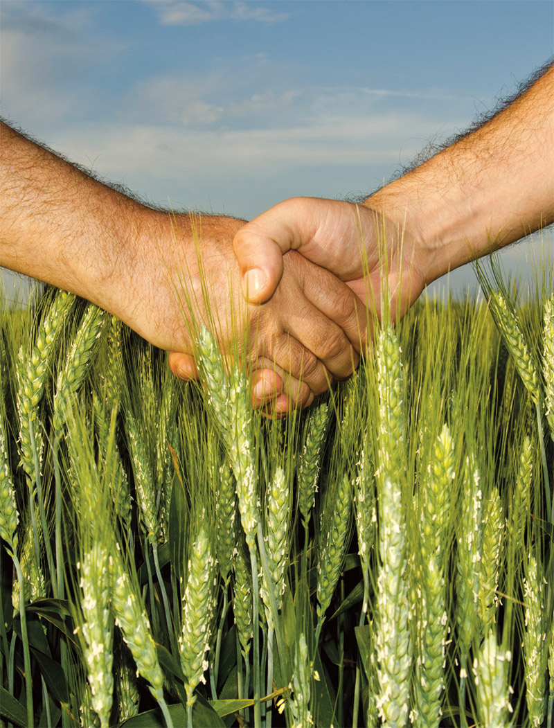 Agricultural Communication and Leadership