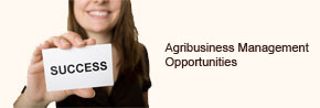 Agri Business Opportunities