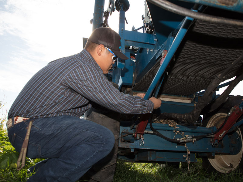 Working on a combine