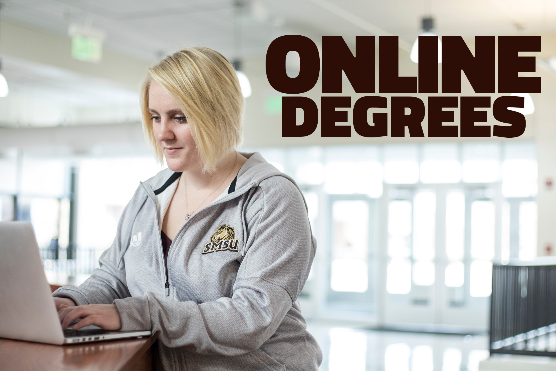 SMSU Online Degrees